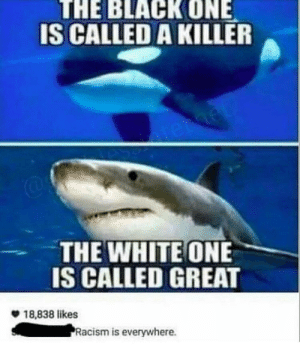 Racism, Tumblr, and White: THE BLACKONE  IS CALLED A KILLER  THE WHITE ONE  IS CALLED GREAT  18,838 likes  Racism is everywhere. Institutional racism?
