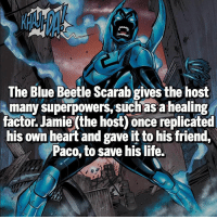 Memes, Blue, and Heroes: The Blue Beetle Scarab gives the host  many superpowers, such as healing  factor Jamie (the host) oncereplicated  his own heart and gave it to his friend,  Paco, to save his life. True Hero Follow @marvelousfacts