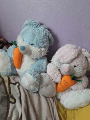 The blue one's named Snart, the pink one's named Enby. They are th ees bunnies of acceptance. So love yourself!: The blue one's named Snart, the pink one's named Enby. They are th ees bunnies of acceptance. So love yourself!