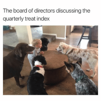 The bork of directors* (U-Lottowayde) | More 👉 @miinute: The board of directors discussing the  quarterly treat index The bork of directors* (U-Lottowayde) | More 👉 @miinute