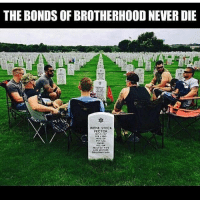 Memes, Never, and 🤖: THE BONDS OF BROTHERHOOD NEVER DIE  IRENE STECK  PECTOR  MANAY  AND MOTHER  GRANDNOTHER 🙏🏻