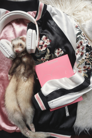"""Beautiful, Tumblr, and Blog: the-book-ferret:""""Perhaps the reason this night looks so beautifulIs not because of these stars or lights, but us""""- 소우주 (Mikrokosmos) BTS"""
