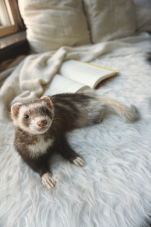 Tumblr, Blog, and Book: the-book-ferret:What are your favorite autumn book recommendations?