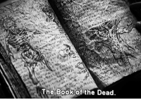 Book, Book of the Dead, and Dead: The Book of the Dead.