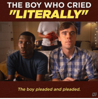 "Memes, Annoying, and Boy: THE BOY WHO CRIED  LITERALLYT  The boy pleaded and pleaded.  CHA Using ""literally"" incorrectly is literally the most annoying thing."