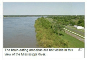 meirl: The brain-eating amoebas are not visible in this  view of the Mississippi River. meirl