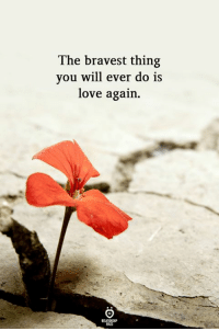 Love Again: The bravest thing  you will ever do is  love again.