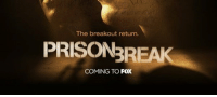 Memes, Prison Break, and 🤖: The breakout return.  PRISON REAK  COMING TO  FOX FOX announce Prison Break to return early 2017 Wentworth Miller & Dominic Purcell are back LIKE if you're excited