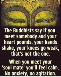 Memes, 🤖, and Buddhist: The Buddhists say if you  meet somebody and your  heart pounds, your hands  shake, your knees go weak  that's not the one.  When you meet your  Soul mate you'll feel calm  No anxiety, no agitation. ITS ALL LOVE