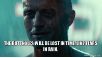 Holes, Lost, and Rain: THE BUTTHOLES WILL BE LOST IN TIME,LIKE TEARS  IN RAIN.  makeameme.org I watched B-holes glitter in the dark