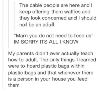 "Alls I Know: The cable people are here and l  keep offering them waffles and  they look concerned and I should  not be an adult  ""Mam you do not need to feed us""  IM SORRY ITS ALL I KNOW  My parents didn't ever actually teach  how to adult. The only things l learned  were to hoard plastic bags within  plastic bags and that whenever there  is a person in your house you feed  them"