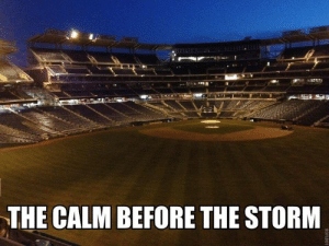 Memes, Mlb, and Storm: THE CALM BEFORE THE STORM So close to Opening Day!  Follow MLB Memes