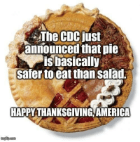 America, Memes, and Thanksgiving: The CDCjust  announced that pie  is basically  safer to eat than salad  HAPPY THANKSGIVING AMERICA 😂