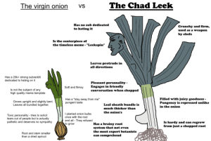 """Meme, The Onion, and Virgin: The Chad Leek  The virgin onion  VS  Has no sub dedicated  Crunchy and firm,  used as a weapon  to hating it  by chefs  Is the centerpiece of  the timeless meme - """"Leekspin""""  Leaves protrude in  all directions  Has a 20k+ strong subreddit  dedicated to hating on it  Pleasant personality  Engages in friendly  conversation when chopped  Soft and flimsy  Is not the subject of any  high quality meme template  Filled with juicy goodness -  Pungency is repressed unlike  Has a """"stay away from me""""  pungent taste  Grows upright and slightly bent  Leaves all bundled together  Leaf sheath bundle is  in the onion  much thicker than  the onion's  I planted onion bulbs  once with the root  Toxic personality - tries to solicit  tears out of people but is actually  pathetic and deserves no sympathy  and all They refused  to grow  Is hardy and can regrow  from just a chopped root  Has a brainy root  system that not even  the most expert botanists  can comprehend  Root and stem smaller  than a dried apricot My first VvC meme - The virgin onion vs the Chad"""