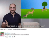 Cheetah, Horse, and Content: The cheetah is faster than the horse and the dog!  How Fast is a Cheetah? I Vsauce (Sesame Studios)  GunRunner 3 days ago  finally Vsauce content on a level I can understand.  Reply 773 meirl