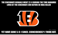 Karma: THE CINCINNATI BENGALS WENT 22-9 DURING THE TIME HARAMBE  LIVED AT THE CINCINNATI ZOO BEFORE HE WAS KILLED  @NFL MEMES  YET HAVE GONE 5-9-1 SINCE. COINCIDENCE?ITHINK NOT Karma