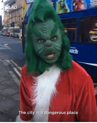 Christmas, Dank, and The Grinch: The city is a dangerous place The Grinch is on the loose with a month to go until Christmas! 😂👏  CONTENTbible