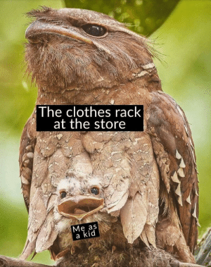 Me irl: The clothes rack  at the store  Ме as  a kid Me irl