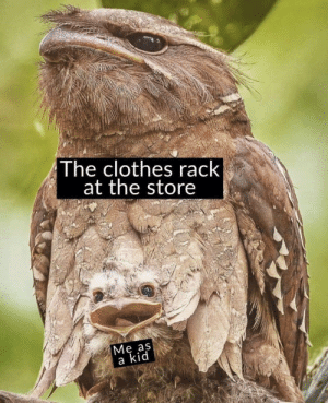 https://t.co/Q5H5UwSxap: The clothes rack  at the store  Ме as  a kid https://t.co/Q5H5UwSxap