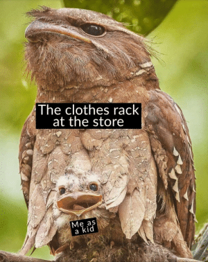 srsfunny:My mom hated my ass.: The clothes rack  at the store  Me aS  a kid srsfunny:My mom hated my ass.