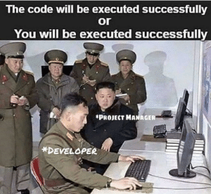 How it feels like in university: The code will be executed successfully  or  You will be executed successfully  *PROJECT MANAGER  *DEVELOPER How it feels like in university