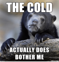 Should I just let it go?: THE COLD  ACTUALLY DOES  BOTHER ME  made on inngur Should I just let it go?
