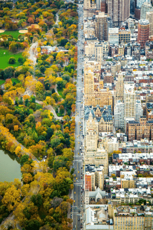 Nyc, Two Worlds, and  Two: The collision of two worlds in NYC.