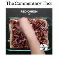Funny, Good, and Onion: The Commentary Tho!!  RED ONION  1/2 Them lil things still look good.. earlytbt funniest15 viralcypher funniest15seconds Rp @alwaysp0ppin2 Www.viralcypher.com