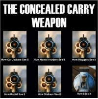 America, Guns, and Memes: THE CONCEALED CARRY  WEAPON  How Car Jackers See It  How Home Invaders See t How Muggers See It  How I See It  How Rapist See lt  How Stalkers See It tacticalshit tactical guns gunporn gunsdaily tacticallife america 801gun pewpew sickguns sickgunsdaily firearms gunlife gunfanatic dailybadass concealed 2ndamendment donttreadonme 1776united thepewpewlife 2aAllDay ΜΟΛΩΝΛΑΒΕ lawabiding americaninfidel infidel pointofview DTOM Resistance_85