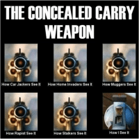 Memes, Home, and 🤖: THE CONCEALED CARRY  WEAPON  How Car Jackers See It How Home Invaders See It  How Muggers See lt  How I See It  How Rapist See It  How Stalkers See It 😉