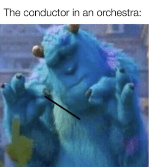 They can control the world with that stick: The conductor in an orchestra: They can control the world with that stick