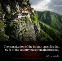 Memes, Bhutan, and 🤖: The constitution of the Bhutan specifies that  60% of the country must remain forested  Weird World