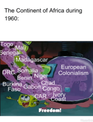Africa, History, and Freedom: The Continent of Africa during  1960:  Togo  Senegal  Mali  Madagascar  European  Colonialism  Somalia  Niger  enin Chad  Burkina Gabon Congo  Faso  CAR vory  Coaśt  VO  Freedom Oh the times have been a-changin'