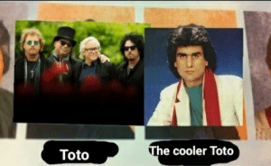 Dank Memes, Toto, and Will: The cooler Toto  Toto Only Italian nibbas will understand
