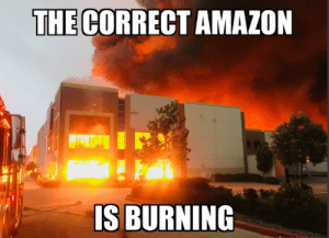 the correct amazon is burning: the correct amazon is burning
