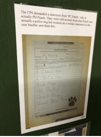 Visited a RAF museum in Cornwall and saw this police statement.: The CPS demanded a statement from PC Peach,' who is  actually PD Peach. They were told several times that Peach was  actually a police dog but insisted on a written statement so the  case handler sent them this.  RESTRICTED -(When Complete  Crime Rof. No.  WITNESS STATEMENT  CJ Act 1967.MC Ast 1980, ss.5A (3 (a) and 5B Crminst Procedure Rules 2005, Run 27 )  URN  Statement of  Age if Under 18  This statement (consisting of  which I know to be false, or do not beleve to be rue  page(s) sach signed by me) is true to the best of my knowledge and onisf and  Bad Man  He lasty  Grood Bay  eac  RESTRICTED Visited a RAF museum in Cornwall and saw this police statement.
