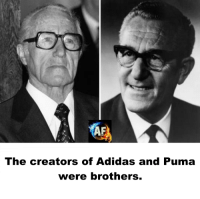 Adidaes: The creators of Adidas and Puma  were brothers.