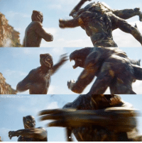 The creature that T'Challa is fighting is called an Outrider. The Outriders are used by Thanos in the comics to find new planets with weak inhabitants.  (Andrew Gifford): The creature that T'Challa is fighting is called an Outrider. The Outriders are used by Thanos in the comics to find new planets with weak inhabitants.  (Andrew Gifford)