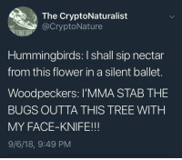 Dank, Flower, and Tree: The CryptoNaturalist  @CryptoNature  VTONATURA  Hummingbirds: I shall sip nectar  from this flower in a silent ballet.  Woodpeckers: I'MMA STAB THE  BUGS OUTTA THIS TREE WITH  MY FACE-KNIFE!!!  9/6/18, 9:49 PM