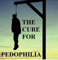 the cure: THE  CURE  FOR  PEDOPHILIA