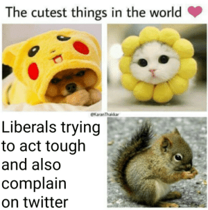 Watch out for them: The cutest things in the world  eKaranThakkar  Liberals trying  to act tough  and also  complain  on twitter Watch out for them
