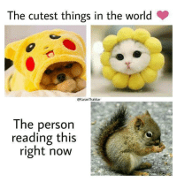 World, Reading, and The World: The cutest things in the world  @KaranThakkar  The person  reading this  right now