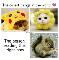 Cutest Things In The World: The cutest things in the world  @KaranThakkar  The person  reading this  right now
