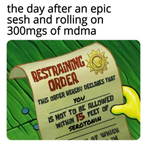 Oof ouch my serotonin: the day after an epic  sesh and rolling on  300mgs of mdma  RESTRAINING  ORDER  THIS ORDER HEREBY DECLARES THAT  YOU  IS NOT TO BE ALLOWED  WITHIN 15 FEET OF  SEROTONIN  OF WHICH Oof ouch my serotonin