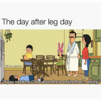 Down here. @herculeaner: The day after  leg day  @herculeaner  If you need me Ill be down here on the floor o Down here. @herculeaner