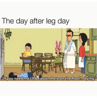 Send help.: The day after leg day  @herculeaner  If you need melll be down here on the floor o  dying Send help.