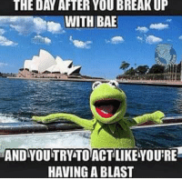 Funny Kermit Memes: THE DAY AFTER YOU BREAKUP  WITH BAE  ANDY OUTRY TO ACT LIKEYOURE  HAVING A BLAST