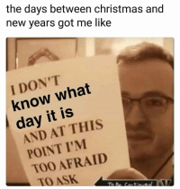 Christmas, Funny, and Lol: the days between christmas and  new years got me like  I DON'T  know what  day it is  AND AT THIS  POINT I'M  TOO AFRAID  TOASK Lol