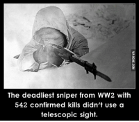 ww2: The deadliest sniper from WW2 with  542 confirmed kills didn't use a  telescopic sight.