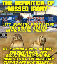 "Memes, Common, and Definition: THE DEFINITION OF  MISSED IRONY""  ELCOME  C.E)  LEFT WİNGERS PROTESTING  THE UNITED STATES  IMMIGRATION POLICY.  THE COMMON  SENSE  BY CLAIMING A PIECE OF LAND  BUILDING A WALL AND  REGULATING WHO CAN AND  CANNOT ENTER THE AREA THEY  CLAIMED AND NOW OCCUPY."